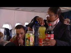 (NL) Huisje, boompje, beestje: Met het vliegtuig