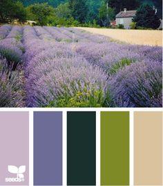 Mielőtt az otthonunkba színeket válsztunk, érdemes átgondolni mik a kedvenc színeink. Ha nem tudjuk pontosan, sokat segít egygyümölcs...