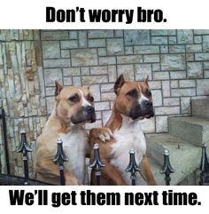 Don't worry bro