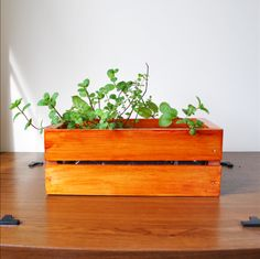 diy windowsill planter