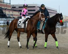 Far From Over wins the 2015 Withers Stakes at Aqueduct. Coglianese Photos/Joe Labozzetta