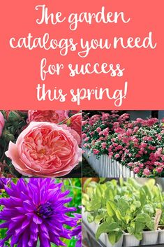 Spring Success Starts Here