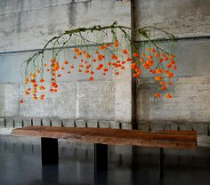 Learn how to make some incredible holiday centerpieces on Garden Design, including this amazing hanging marigold centerpiece. Decoration Evenementielle, Flower Decorations, Table Decorations, Ceremony Decorations, Hanging Centerpiece, Holiday Centerpieces, Hanging Table, Deco Floral, Arte Floral