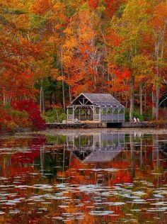 Moore State Park, Massachusetts