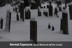 Tips for taking pictures in the snow