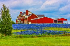 Images About Texas Hill Country Homes And Ranches On Pinterest Texas