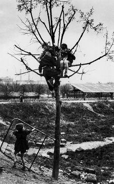 arabamolsamontgiymezdim: children on a wasteground, 1950. porte de saint-cloud. Sabine Weiss
