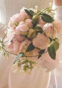 Résultats Google Recherche d'images correspondant à http://www.touslesmariages.com/datas/produits/b/o/bouquet-de-mariee-romantique-rose/l2/49b5332f5aa1c.jpg