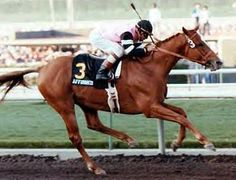 Affirmed- 1978 Triple Crown Victor- our most recent!