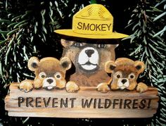 Christmas Items - Smokey & Cubs Ornament