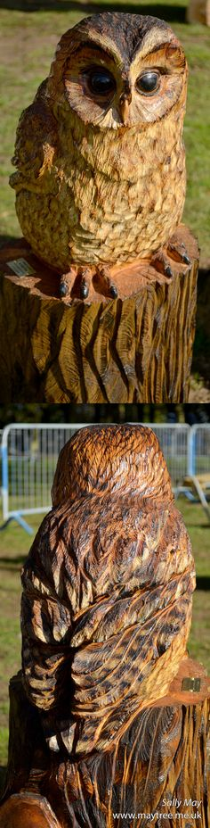 Tawny owl chainsaw carving by Sally May