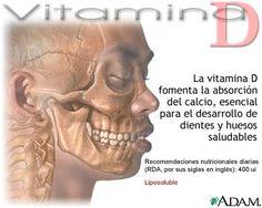 Vía Saludable: Un estudio sugiere que la vitamina D es importante durante el embarazo
