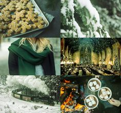 harry potter aesthetics: slytherin winter/christmas 1/2