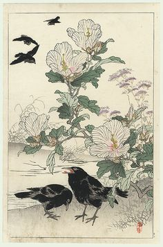 Kono Bairei (1844 - 1895) Japanese Woodblock Print Crows