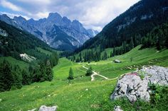 Germany Berchtesgadener Alpen National Park, Bavaria: Greeny, relaxing and very Heidi style