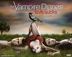 The Vampire Diaries. If you'd like to join our FB discussion group: http://www.facebook.com/groups/156885794398347/
