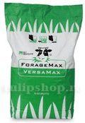 Seminte iarba furajera VersaMax Beef Hot and Dry Beef, Hot, Meat, Ox, Ground Beef, Steaks