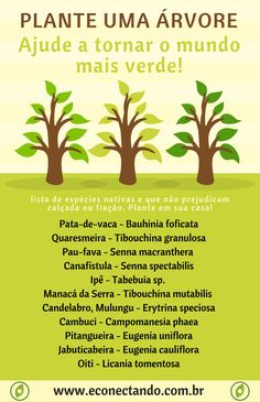 Grow Home, Environmental Education, Global Warming, Sustainable Living, Sustainability, Flora, Study, Earth, Landscape