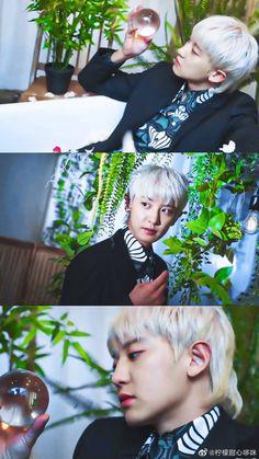 Exo Ot12, Chanbaek, Park Chanyeol Exo, Baekhyun, Exo Songs, Exo Korean, Korean Actors, Husband, Boys