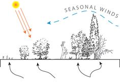 ... Design Ideas moreover Rose Trellis. on garden fence design ideas