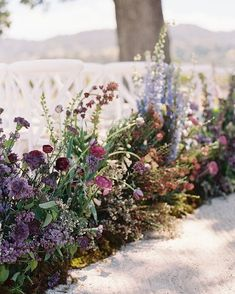 A wild aisle of purple and lavender lilac, ranunculus, fritillaria persica, French tulips, lisianthus and carnations and basically all…
