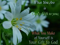 What you are is God's gift to you...  We found this saying and its stuck with me forever mom, thank you.