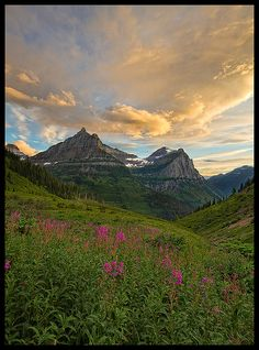 Can't wait for summer . . .  the location for this year's vacation destination: Glacier National Park