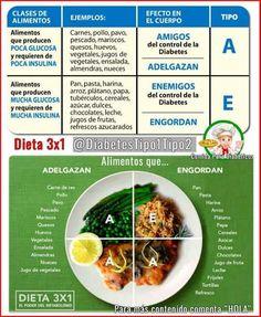 dieta 3 3 3 pareri