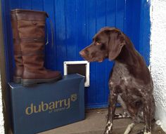 Some people love their #Dubarry boots so much that they hire security to watch over them!