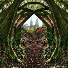 3925311_1_Vhod_v_Yaponskii_sad_Portlend_shtat_Oregon (480x480, 258Kb)