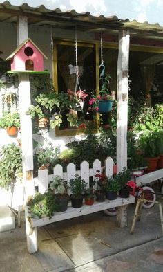 El jardin de la abuela
