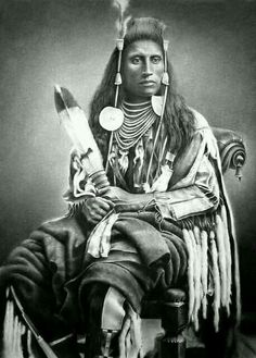 Medicine Crow; warrior,  leader.