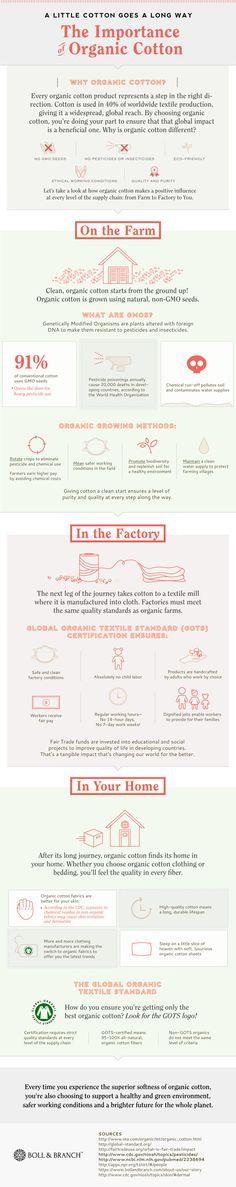 The Importance of Organic Cotton - Do you fancy an infographic? There are a lot of them online, but if you want your own please visit http://www.linfografico.com/prezzi/ Online girano molte infografiche, se ne vuoi realizzare una tutta tua visita http://www.linfografico.com/prezzi/