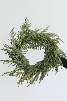 Give your front door an upgrade with an affordable year round wreath from Afloral.com. #pine #norfolkpine #wreaths Christmas Greenery, Christmas Wreaths, Christmas Decorations, Wreaths For Front Door, Door Wreaths, Dried Flowers, Silk Flowers, Norfolk Pine, Pine Branch