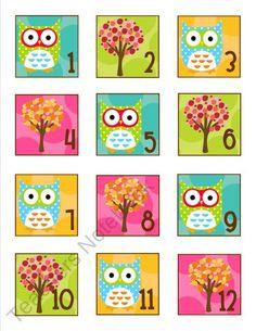Teachers Notebook Owl calendar numbers