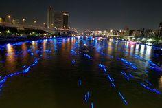 100,000 LED lights floating like Fireflies | for urban women