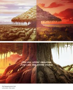 The Banyan-Grove Tree | Avatar Parallels | Book 4: Balance | The Last Airbender | Legend of Korra | Avatar