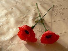*** Mak - Instruktaż - Warsztat - Najpiękniejsze kwiaty z bibuły ***
