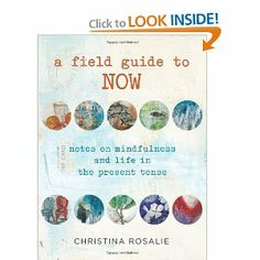 Amazon.com: A Field Guide to Now: Notes on Mindfulness and Life in the Present Tense