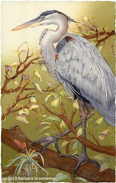 I'm Lookin' Good, Too (Great Blue Heron) by Barbara Groenteman Watercolor ~ framed 42 x 32 Watercolor Bird, Watercolor Animals, Watercolor Paintings, Watercolors, Heron Tattoo, Art Mignon, Shadow Art, Bird Artwork, Bird Illustration