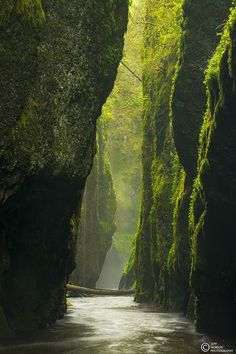 ~~The Canyon | light pouring through the canyon, Oneonta Falls, Columbia River Gorge, Oregon by Jeff Hobson~~