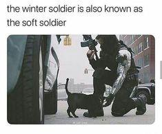 the soft winter soldier - Marvel Funny Marvel Memes, Dc Memes, Avengers Memes, Marvel Jokes, Marvel Actors, Marvel Dc Comics, Marvel Avengers, Bucky Barnes, Sebastian Stan