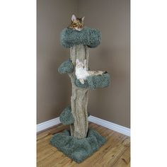 New Cat Condos Play Cat Tree