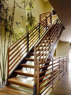Bottom of stairs is a different color from the riser and flooring. Striking Hill Street Residence by John Maniscalco Architecture / Dolores Heights, San Francisco, USA Indoor Stair Railing, Staircase Railings, Banisters, Modern Staircase, Stairways, Staircase Pictures, Staircase Decoration, Modern Railing, Staircase Ideas