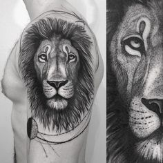 Lion for Kevin. Thank you dude!!