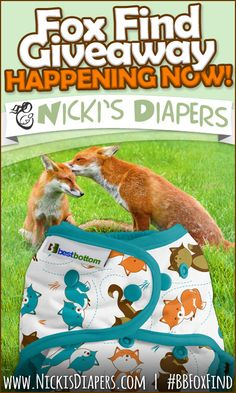 NickisDiapers.com is giving away the limited edition Best Bottom Diapers print - Fox Find! http://www.nickisdiapers.com/Fox-Find-Giveaway_b_25.html