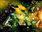 mariposas - Bing