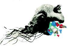 Maak kennis met Plastic Bernard  Burgerlijke staat: ontelbare keren gehuwd; ontelbaar aantal kinderen.  Categorie gevaar: hij is zogenaamd onschadelijk en ogenschijnlijk zachtaardig, maar in werkelijkheid zeer gevaarlijk op lange termijn!  Het gluiperig monster vervuilt de zee volledig, daardoor kan geen enkele vis overleven en bijgevolg is het voortbestaan van de vissers bedreigd.