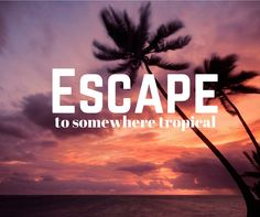 www.vacationsooner.com www.shaynanrunnels.dreamtrips.com/refer
