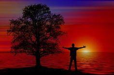 La inteligencia emocional está definida como la capacidad que tenemos de reconocer y controlar las emociones que sentimos para luego entrar en armonía con cada una de ellas.
